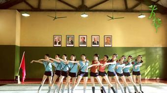 《芳华》:凭吊悲欣交集的青春