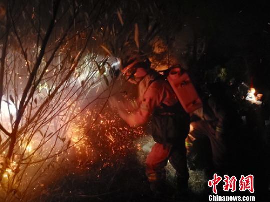 森林消防员全力扑灭火场明火。 潘东 摄