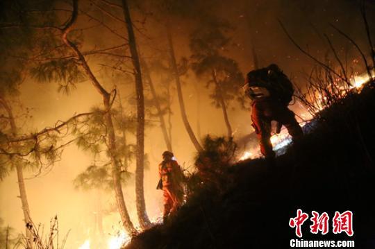 森林消防员双人协作扑打火线。 李从林 摄